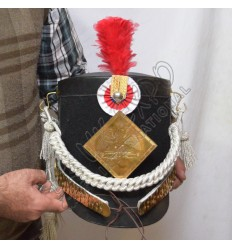 British Shako Hat With Red Hackle And French grenadier Shako Plate
